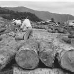丸瀬布貯木場